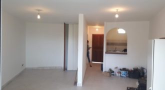 Spacieux appartement F1/ F2, Boucan Canot
