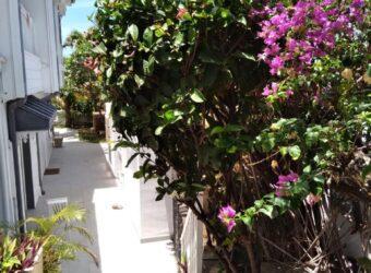 Appartement F3 proche plage, Saint Pierre